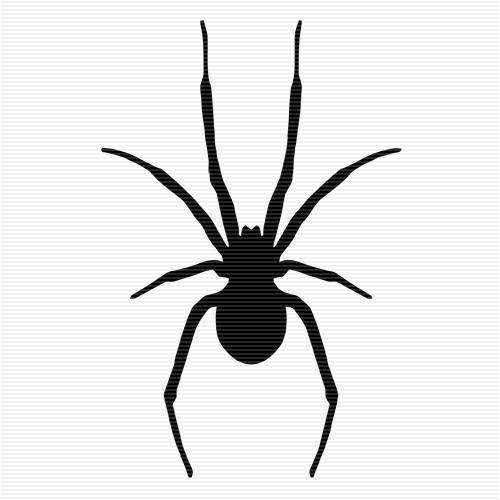 500x500 Spiders Clip Art