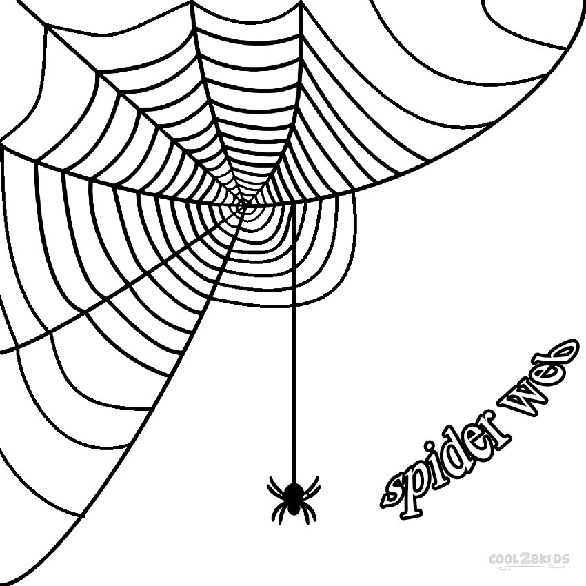 850x850 Printable Spider Web Coloring Pages For Kids Cool2bKids