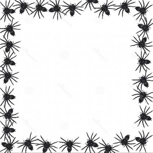 500x500 Spider Clipart Border