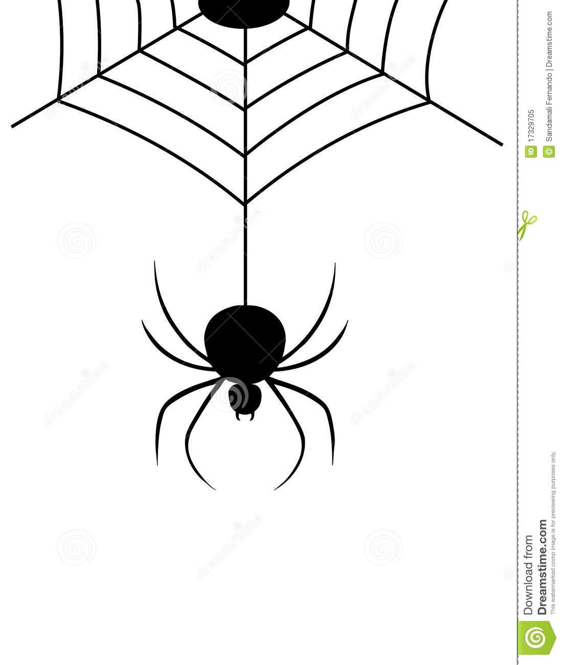 1101x1300 Drawn Spider Web Hanging