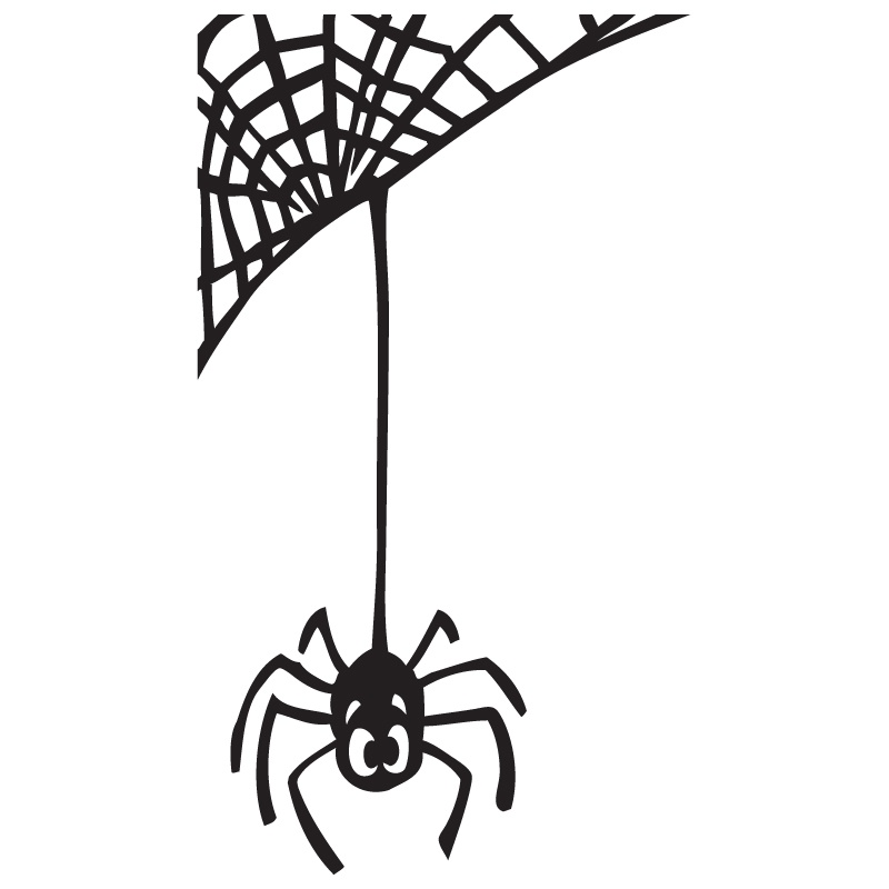 800x800 Spider Web Clipart Hanging