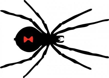425x307 Spider Web Border Clipart Clipart Panda