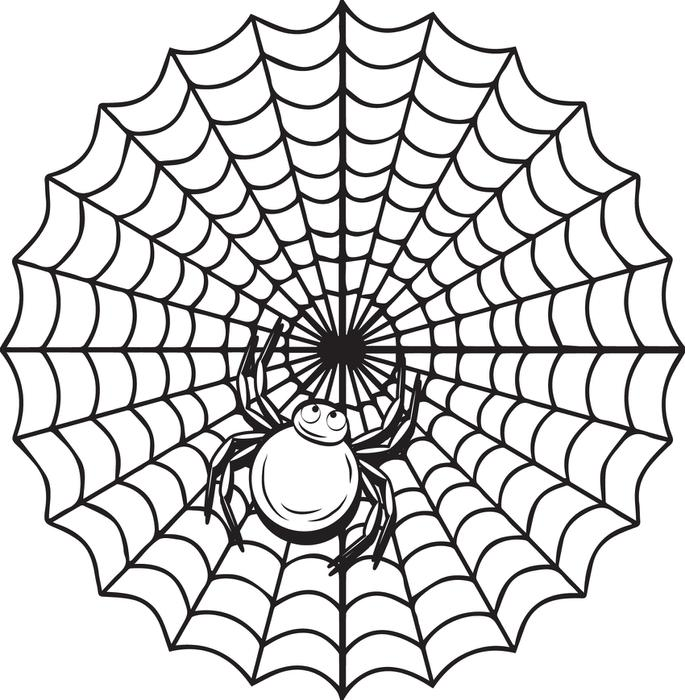 685x700 Free Printable Halloween Spider Coloring Page For Kids
