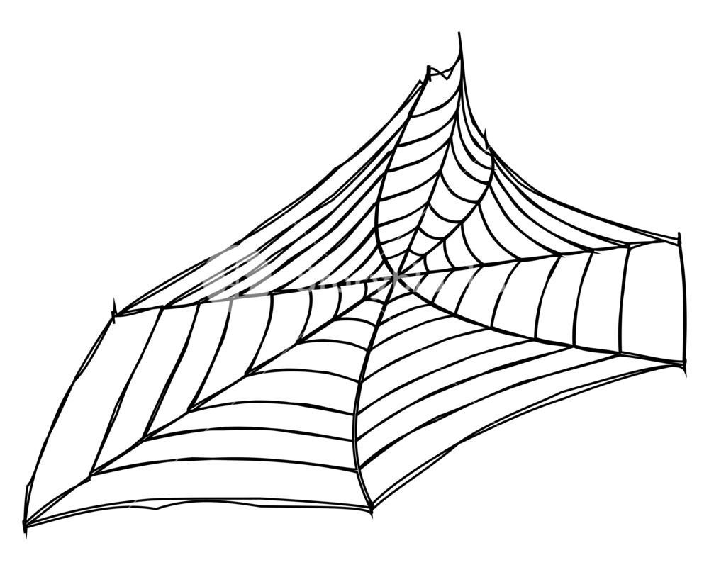 1000x797 Spider Web Art Design Royalty Free Stock Image