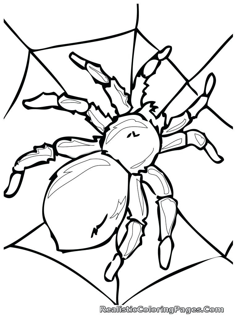 768x1024 Draw Bugs Coloring Pages In Free Kids With 104 Wonderful Spider