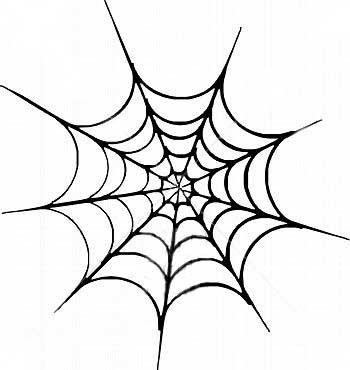350x370 Drawn Spider Web Graphic