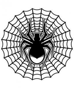 257x311 Spider Web Tattoo Designs Lovetoknow