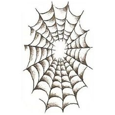 236x236 Spiderweb Drawing