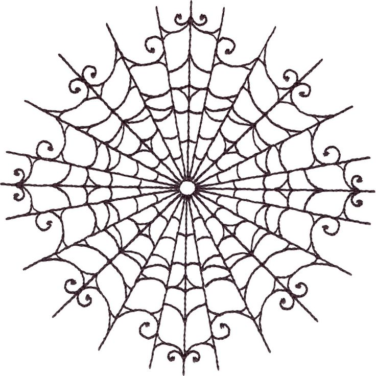 736x736 Collection Of Spider Web Tattoo