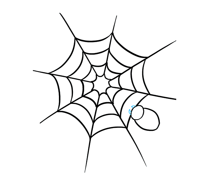 678x600 How To Draw How To Draw A Spider Web With Spider In A Few Easy