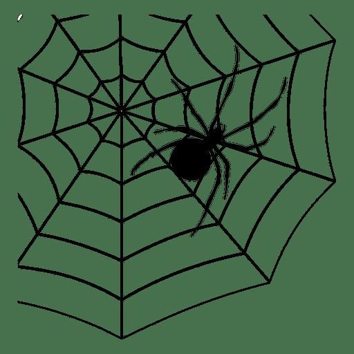 512x512 Spider Web 5