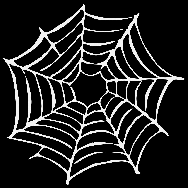 1238x1240 Spiderweb