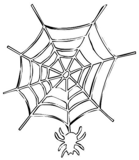 455x522 Spider On Web