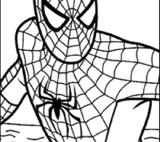 678x600 Spider Man Coloring Pages Best Coloring Pages