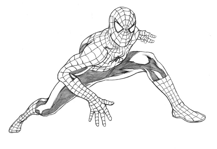 875x600 Drawn Spiderman Pen