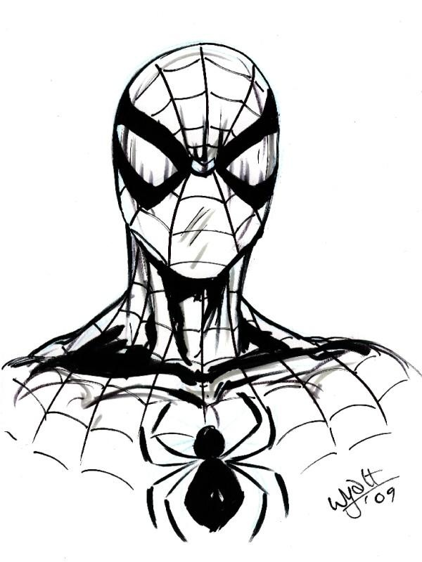 Spiderman Line Art
