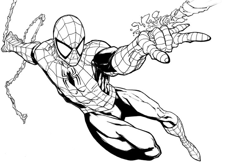 736x536 42 Best Spider Man Tattoo Outlines Images Cool