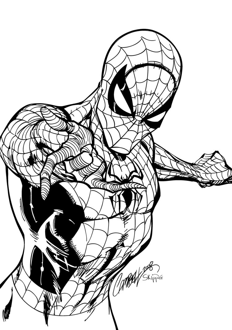 749x1065 Spiderman Warm Up Inks By J Skipper
