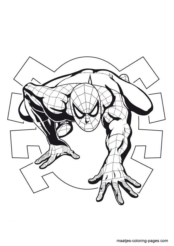 595x842 52 Best Spiderman Images Spiderman, Draw And Pencil