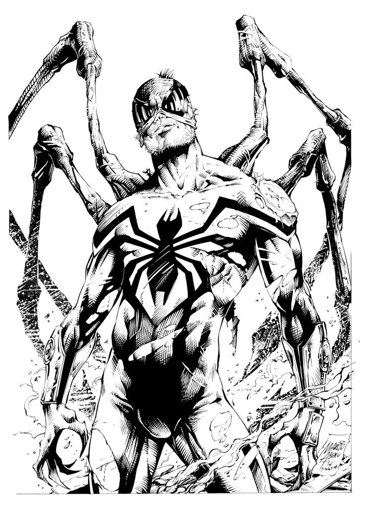 736x1054 Superior Spider Inks By Devgear On Lineart Spiders