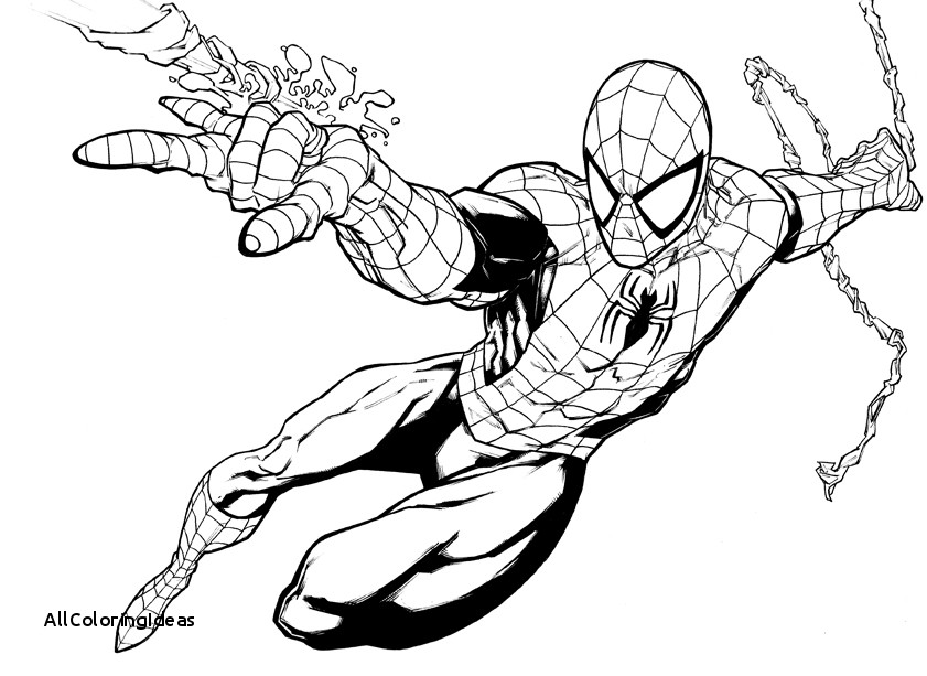 841x613 Update Spiderman Coloring Pages