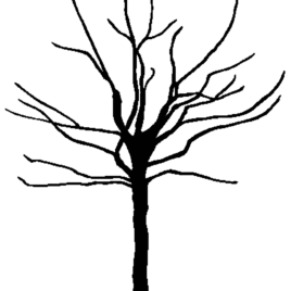 268x268 Spooky Tree Clipart Coloring Pages Clipartfest Spooky Tree