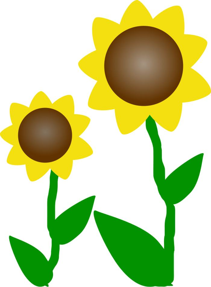 700x952 Free Cliparts Flowers