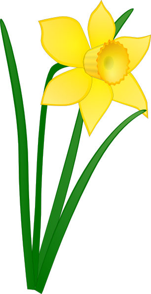 306x596 St Davids Day Free Vector Daffodil Clip Art Clip Art Flowers