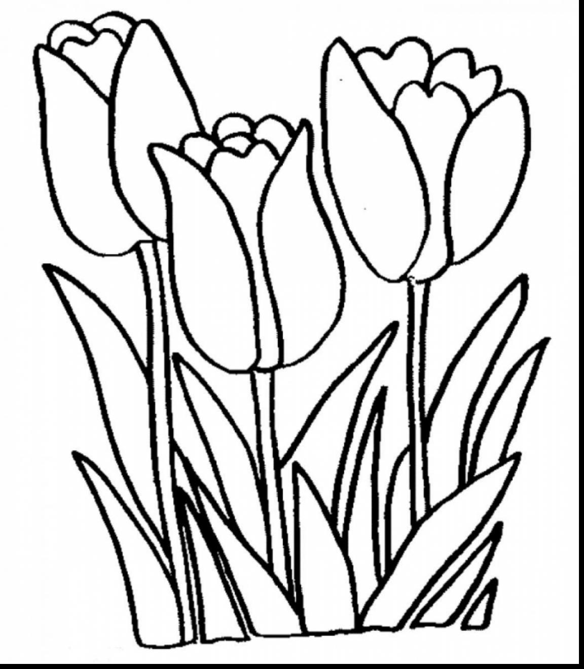 Spring Flowers Black And White Clipart Free Download Best Spring