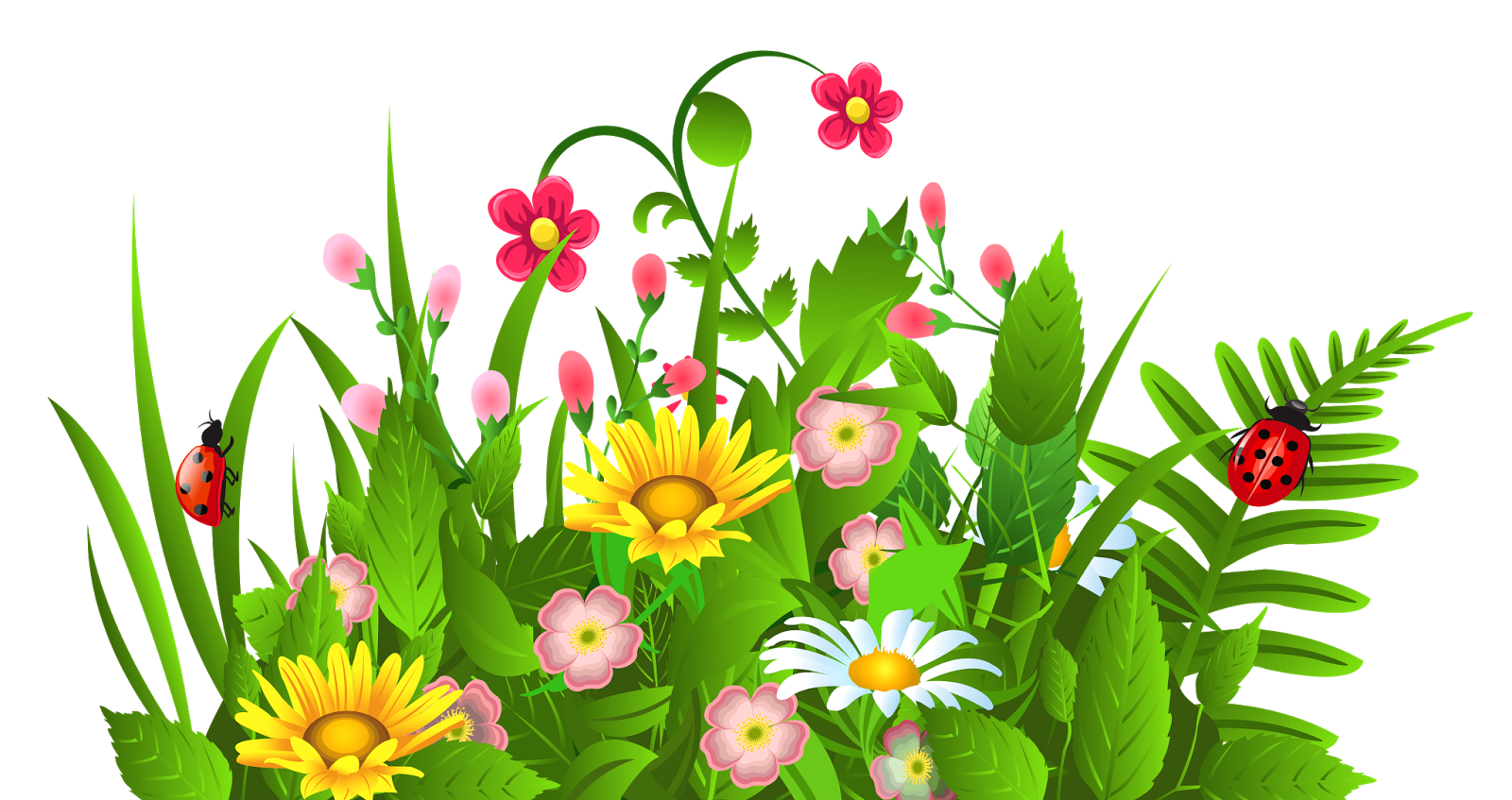 Spring Flowers Borders Clipart   Free download best Spring ...