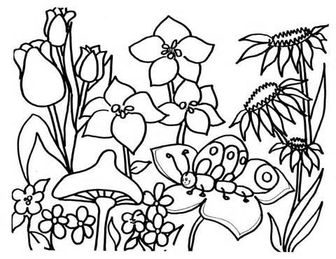 480x370 Flower Garden Clip Art Black And White 101 Clip Art