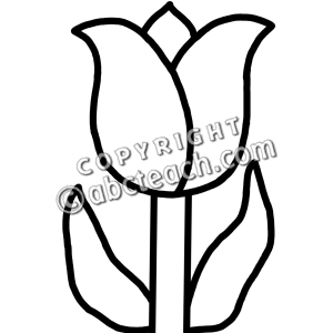 300x300 Black And White Tulip Clipart
