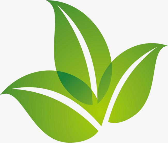 650x556 Spring Green Leaf Logo Design, Spring, Green Leaves, Green Png