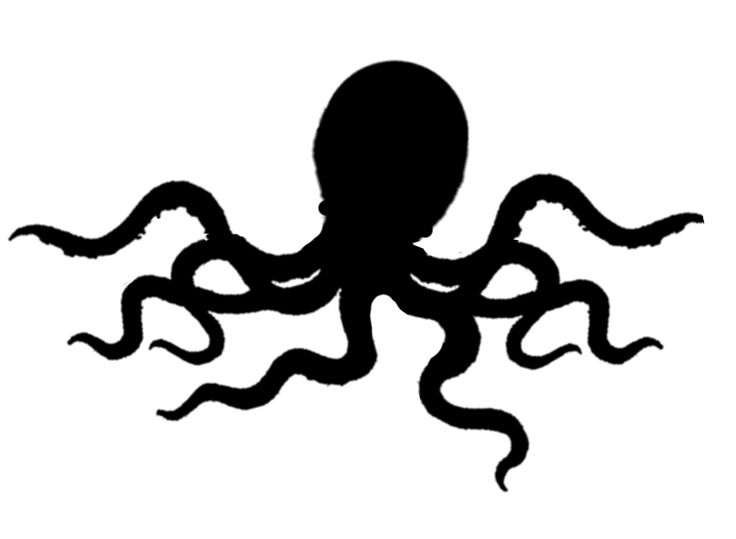 Squid Clipart Black And White