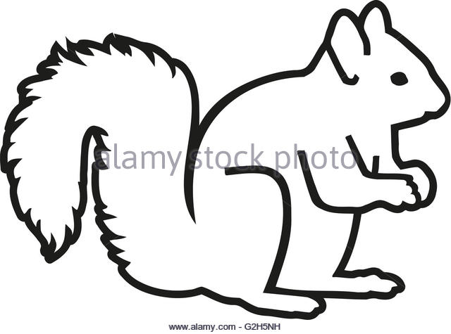 640x475 Squirrel Silhouette Stock Photos Amp Squirrel Silhouette Stock