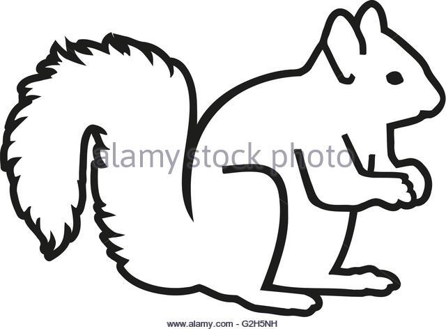 640x475 Squirrel Silhouette Stock Photos Amp Squirrel Silhouette Stock