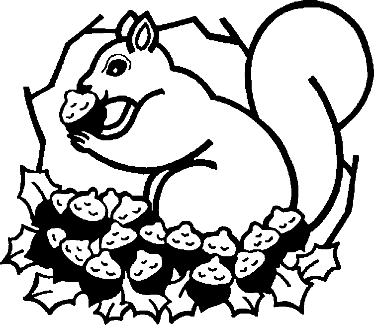 752x653 Squirrel Black And White Squirrel Clipart Black And White Image 1