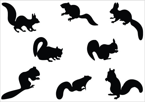 501x352 Squirrel Black And White Squirrel Clipart Tiny 2