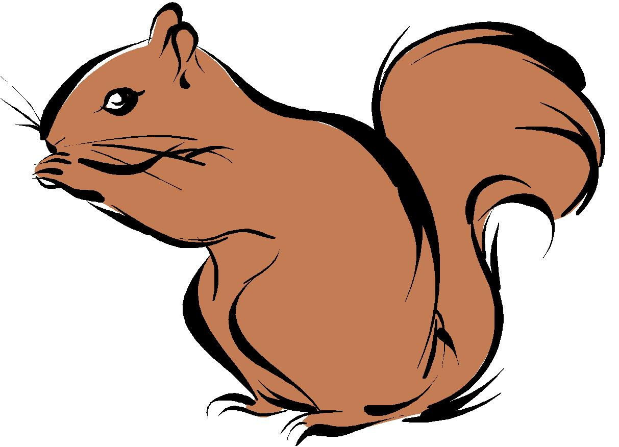 1213x876 Squirrel Black And White Squirrel Clipart 7 2