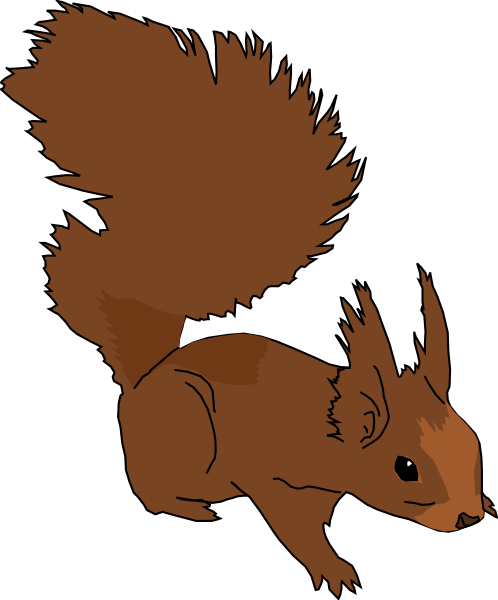 498x600 Baby Squirrel Clipart Cute Squirrel Clipart Black