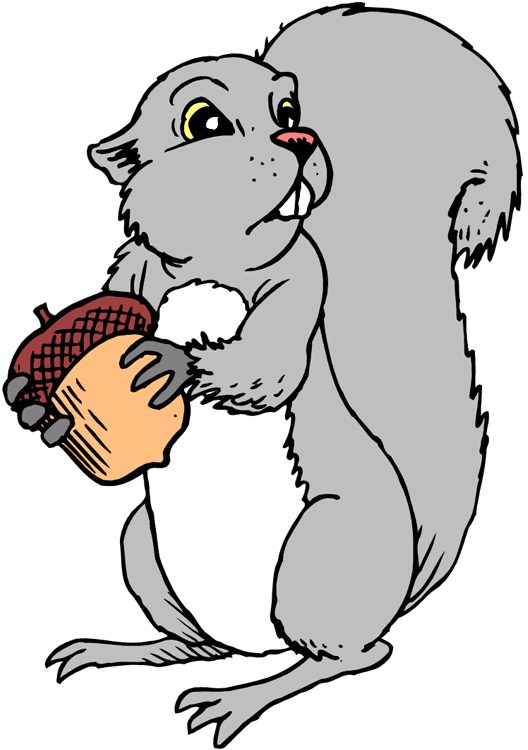 528x750 Squirrel Black And White Squirrel Clipart 3