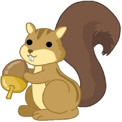 400x400 28 Best Squirrel Images Art Print, Birthdays