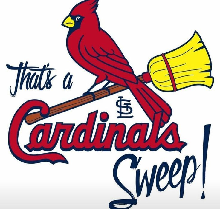 736x701 181 Best St Louis Cardinals Images St Louis