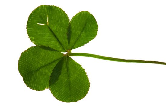 550x366 Irish Tunes For A St. Patrick's Day Workout Popsugar Fitness