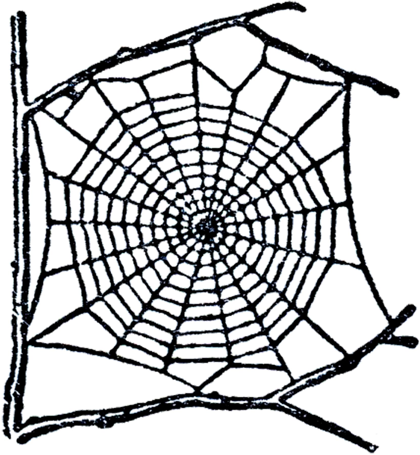 1660x1800 Free Spider Web Clip Art!