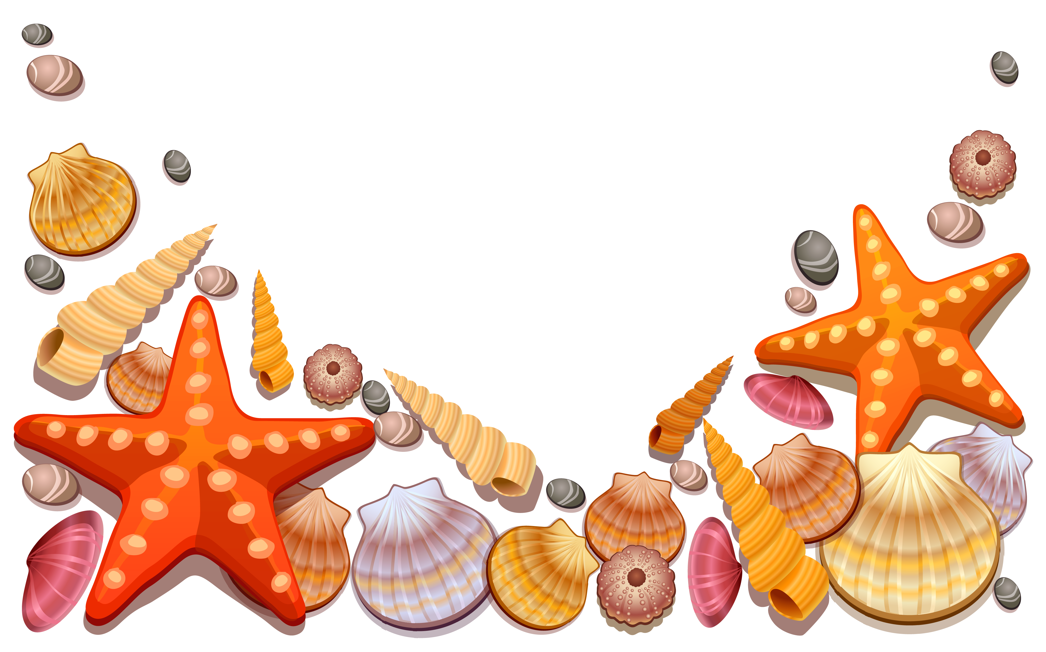 4242x2645 Starfish Sea Shell Clipart