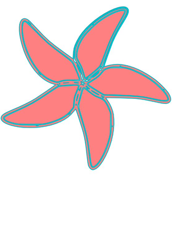 555x785 Clip Art Starfish Svg