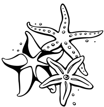 408x419 These Stunning Starfish Tattoos Are Sure To Dazzle You Starfish