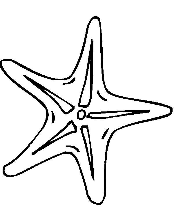 Surprising Starfish Outline Free Download Best Starfish Outline On Download Free Architecture Designs Scobabritishbridgeorg