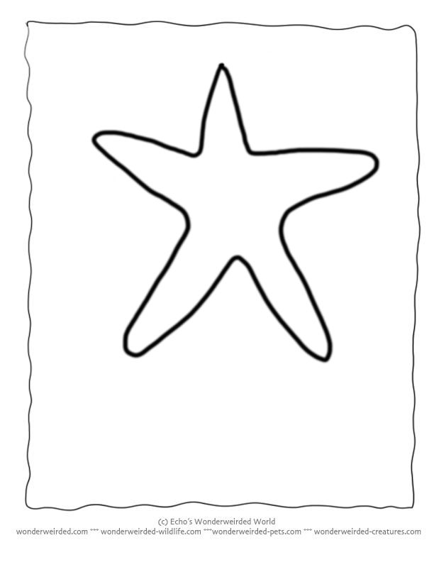 Starfish Outlines